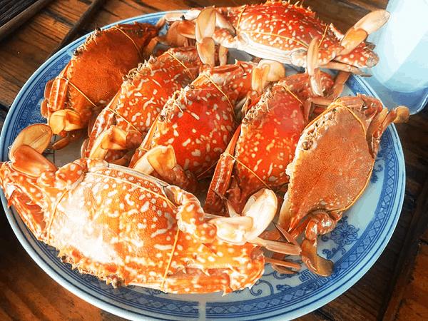 Ăn gì ở đâu ngon khi du lịch Sầm Sơn/ Món ngon đặc sản Sầm Sơn, địa chỉ ngon rẻ