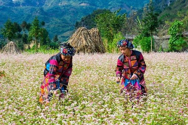 Địa điểm du lịch nổi tiếng 63 tỉnh thành Việt Nam