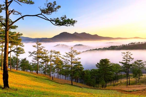 Địa điểm du lịch trong nước đẹp nhất dịp Tết