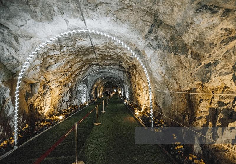 Review Cầu Kính Rồng Mây Sapa, đường hầm dẫn lên thang máy Cầu Kính
