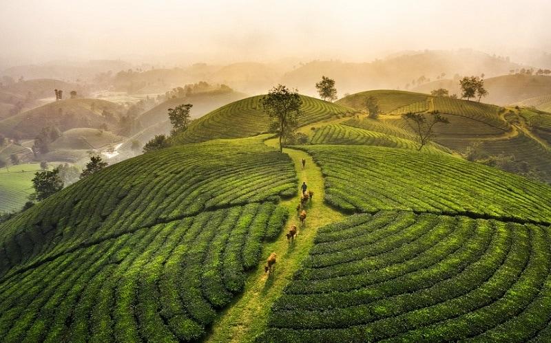 Việt Nam nhìn từ trên cao hùng vĩ