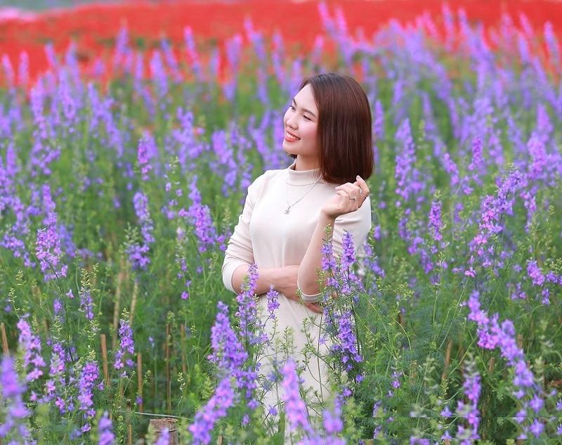 Review thung lũng hoa Hồ Tây mùa hoa violet