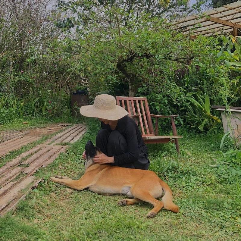 Tre homestay Đà Lạt - homestay nổi tiếng ở Đà Lạt