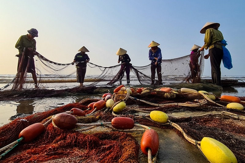 Các khu chợ hải sản Sầm Sơn tươi ngon, đông đúc