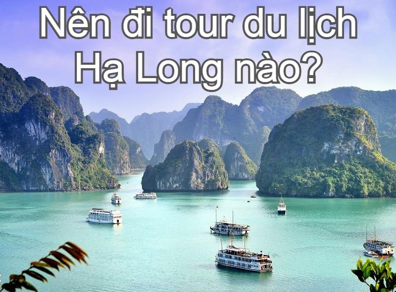 Gợi ý cách săn tour du lịch Hạ Long giá rẻ. Nên đi tour du lịch Hạ Long nào, giá bao nhiêu?