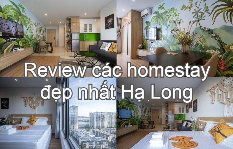 Review các homestay đẹp ở Hạ Long. Nên ở homestay nào Hạ Long? Strawberry Homestay