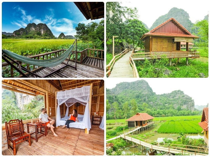 Homestay Ninh Bình, Lotus Field Homestay