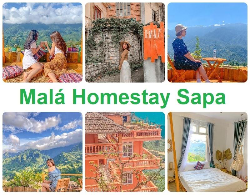 Homestay đẹp ở Sapa, Malá Homestay Sapa