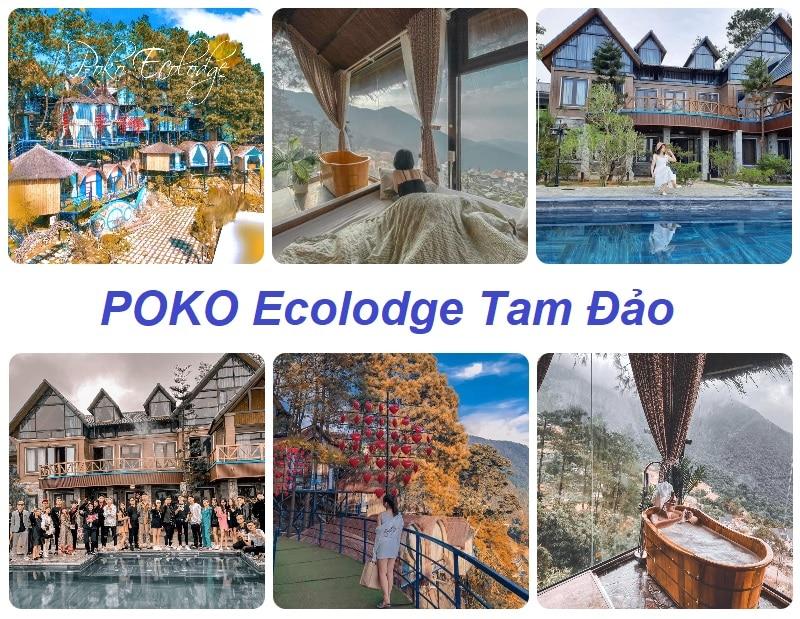 Resort đẹp ở Tam Đảo, POKO Ecolodge Tam Dao